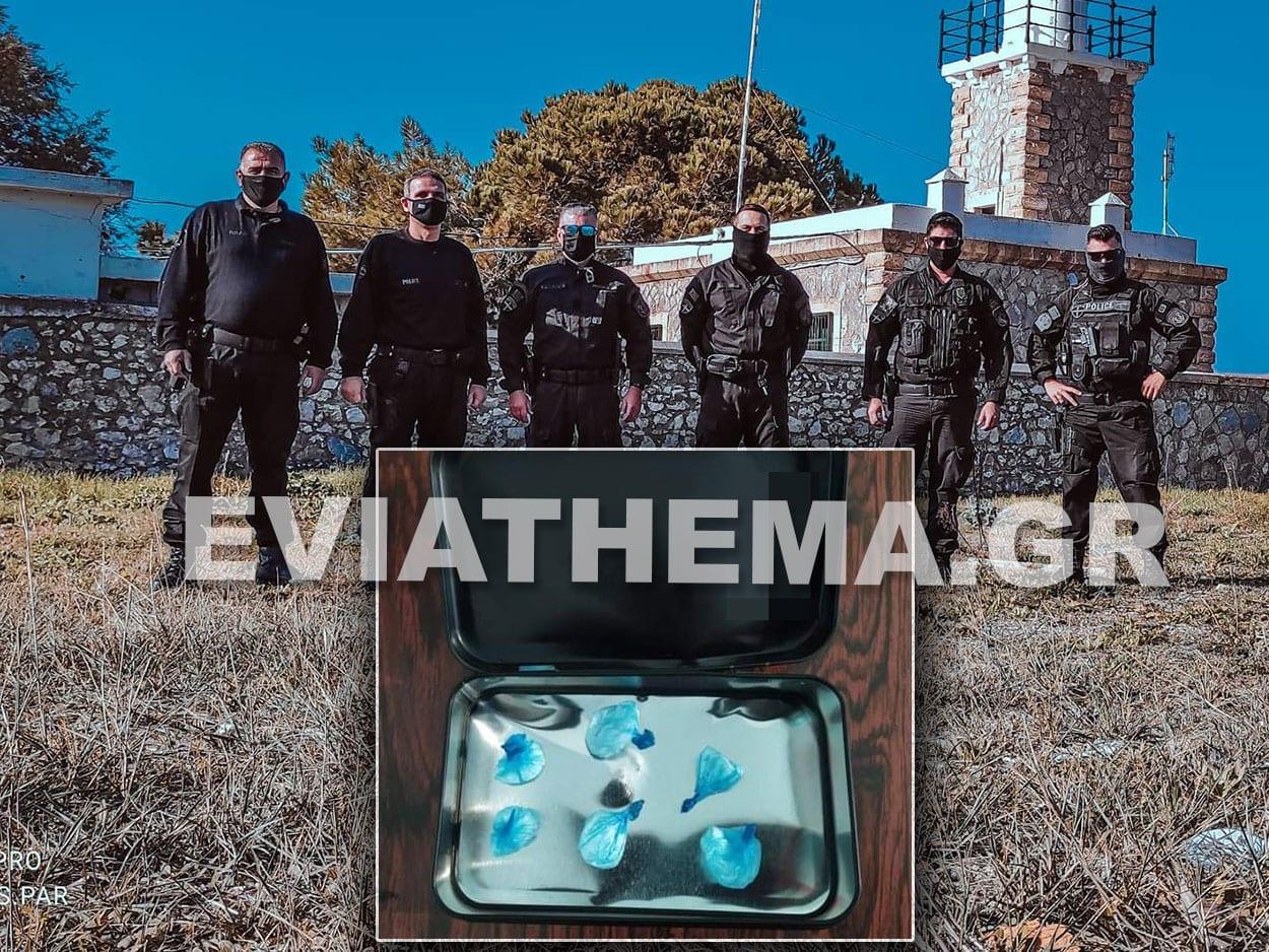 Σύλληψη Ναρκωτικών Γ ΟΠΚΕ Βόρεια Εύβοια