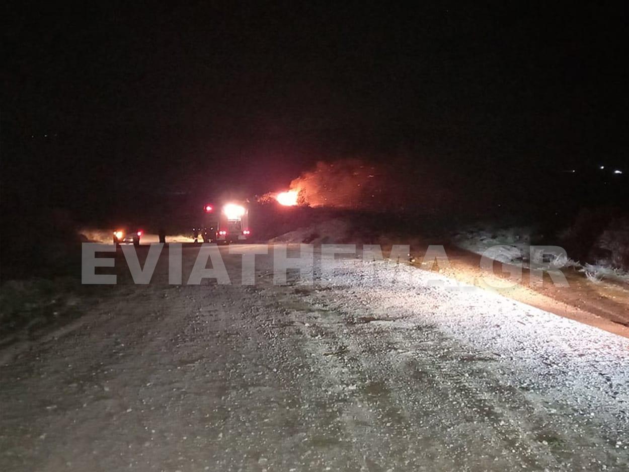 Φωτιά στο Αλιβέρι - Άγιος Λουκάς