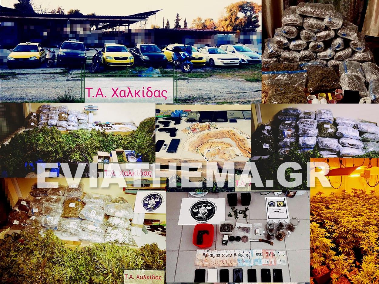 Τμήμα Ασφάλειας Χαλκίδας - Εγκληματικές Οργανώσεις - Ναρκωτικά