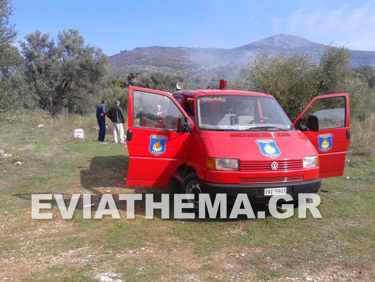 """Φωτιά ξέσπασε σήμερα Τετάρτη λίγο μετά τις 9 το πρωί στην περιοχή """"Πλακάκια"""" της Ερέτριας, Φωτιά στην Ερέτρια Ευβοίας – Κάτοικος πήγε να κάψει σκουπίδια και λάστιχα [ΦΩΤΟΓΡΑΦΙΕΣ ], Eviathema.gr   Εύβοια Τοπ Νέα Ειδήσεις"""
