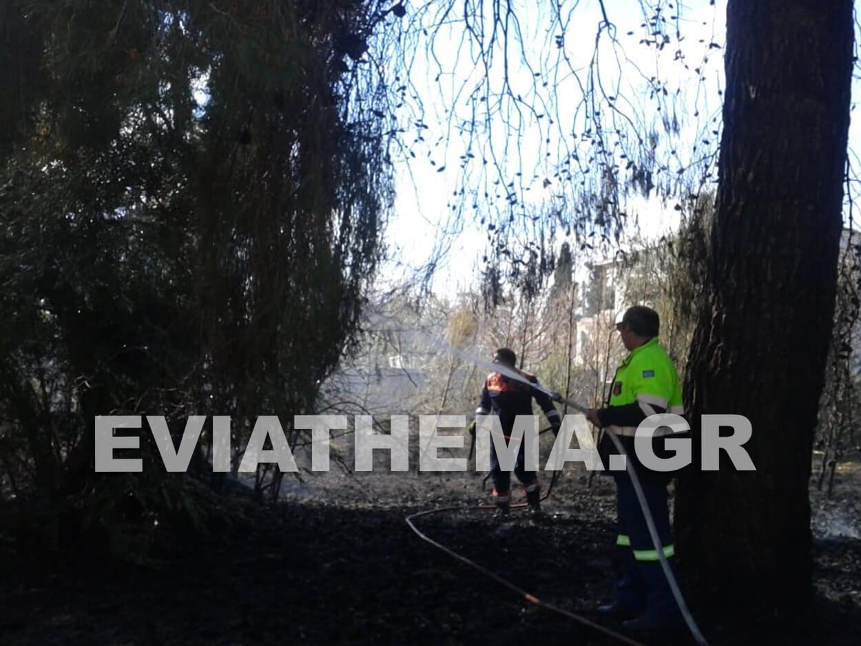 Βόρεια Εύβοια: Φωτιά τώρα στο Πύλι, Βόρεια Εύβοια: Φωτιά τώρα στο Πήλι, Eviathema.gr | Εύβοια Τοπ Νέα Ειδήσεις