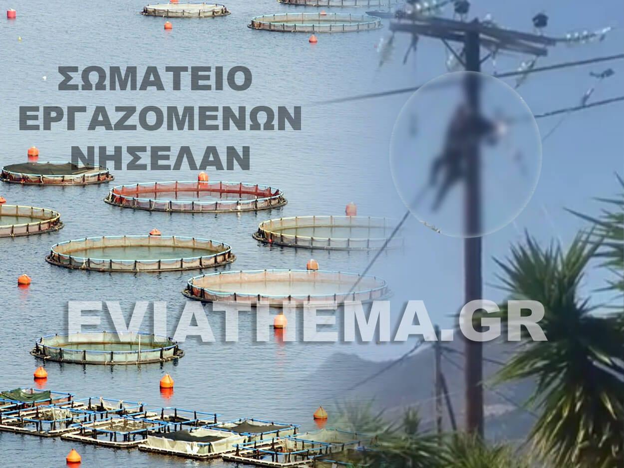 , Συλλυπητήριο μήνυμα από το Σωματείο Εργαζομένων ΝΗΣΕΛΑΝ για τον χαμό των 3 εργατών στην Γυμνού Ερέτριας, Eviathema.gr | Εύβοια Τοπ Νέα Ειδήσεις