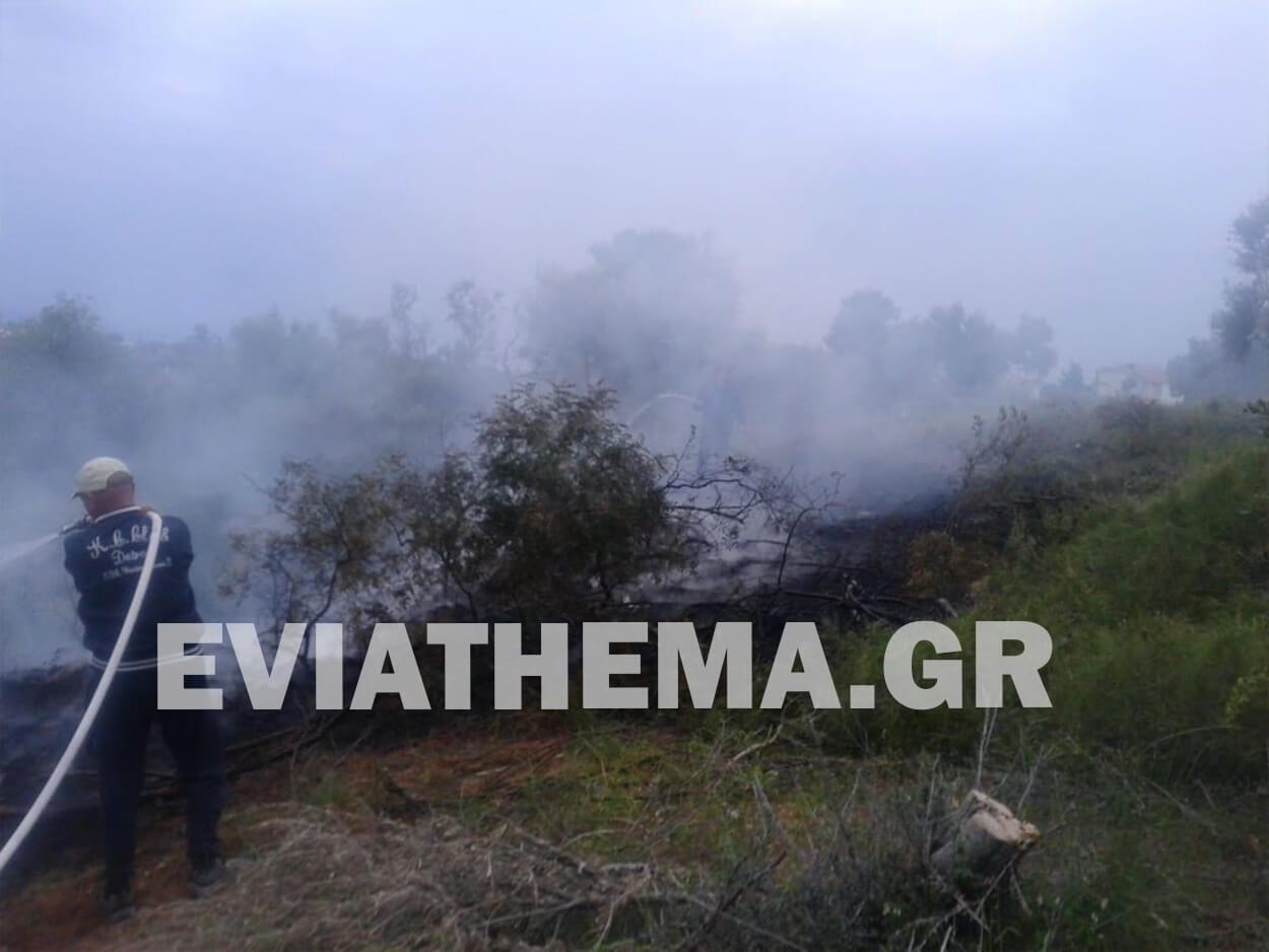 Ερέτρια Ευβοίας: Πυρκαγιά κοντά στην εκκλησία του Αγίου Παύλου, Ερέτρια Ευβοίας: Πυρκαγιά κοντά στην εκκλησία του Αγίου Παύλου [ΦΩΤΟΓΡΑΦΙΕΣ], Eviathema.gr | ΕΥΒΟΙΑ ΝΕΑ - Νέα και ειδήσεις από όλη την Εύβοια