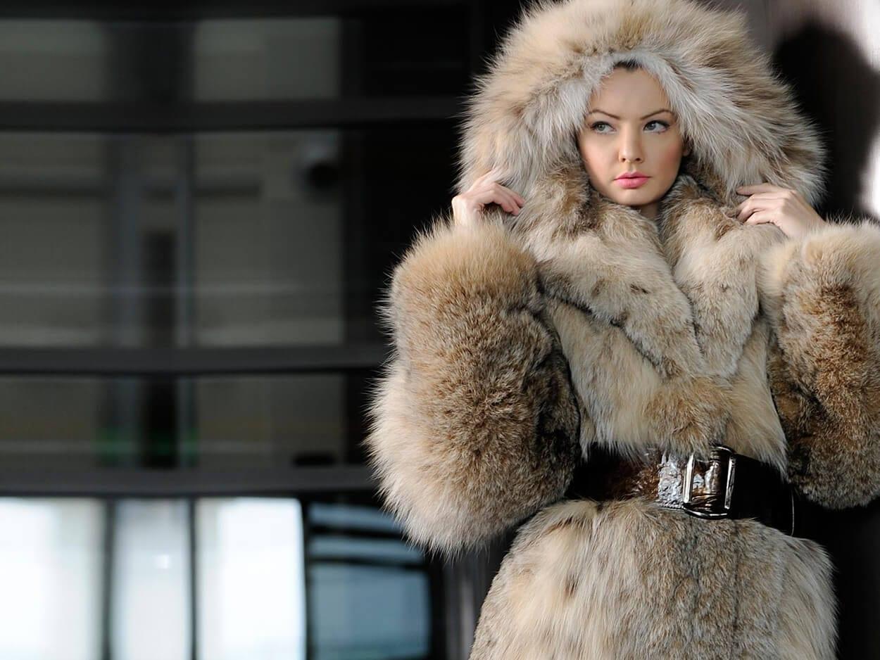 , Ισραήλ: Έγινε η πρώτη χώρα που απαγορεύει το εμπόριο γούνας ζώων για τη μόδα, Eviathema.gr | Εύβοια Τοπ Νέα Ειδήσεις