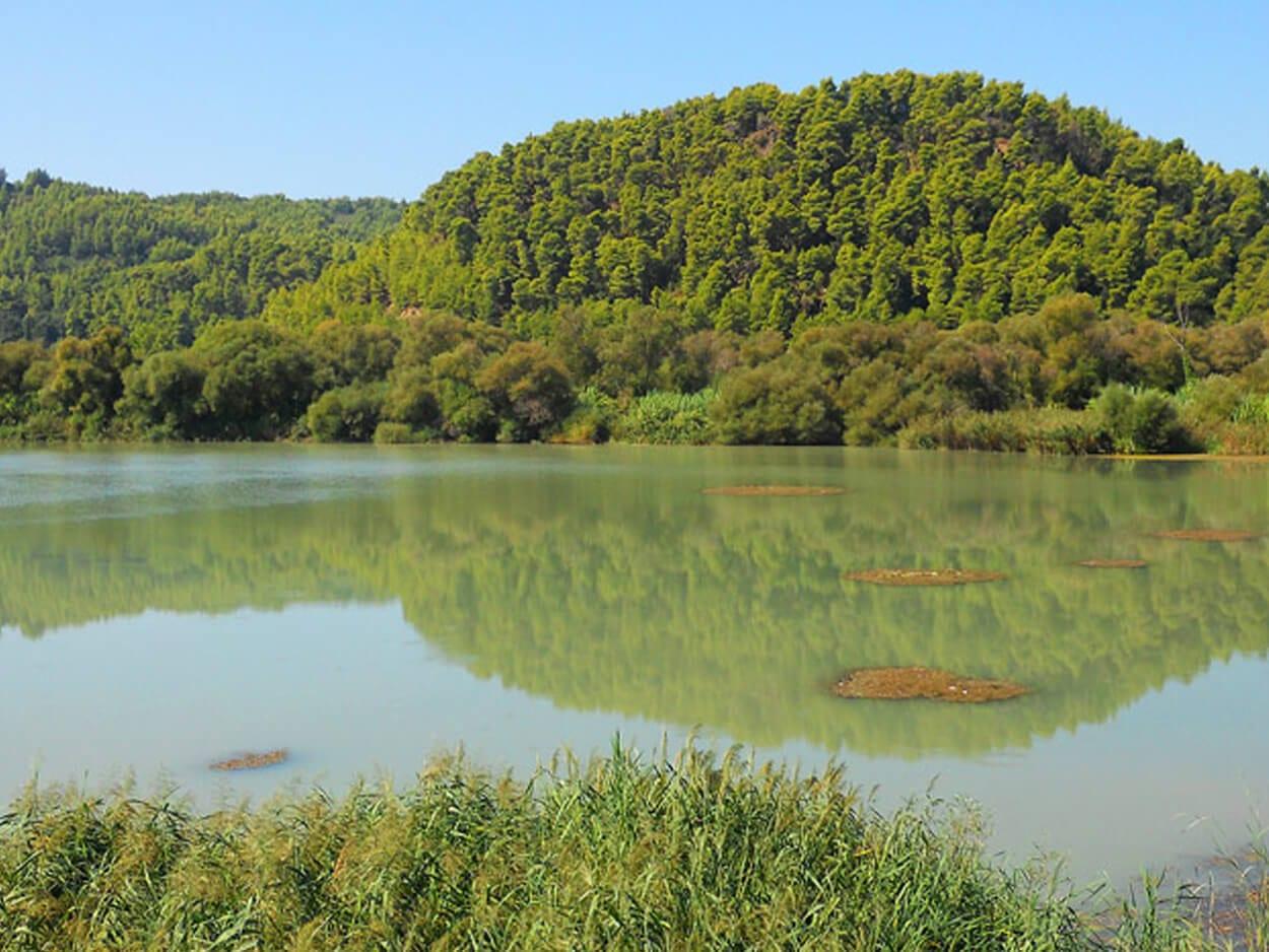 Αγνοείται γυναίκα στον Πηνειό ποταμό, Συναγερμός στη Λάρισα: Αγνοείται γυναίκα στον Πηνειό ποταμό, Eviathema.gr | Εύβοια Τοπ Νέα Ειδήσεις