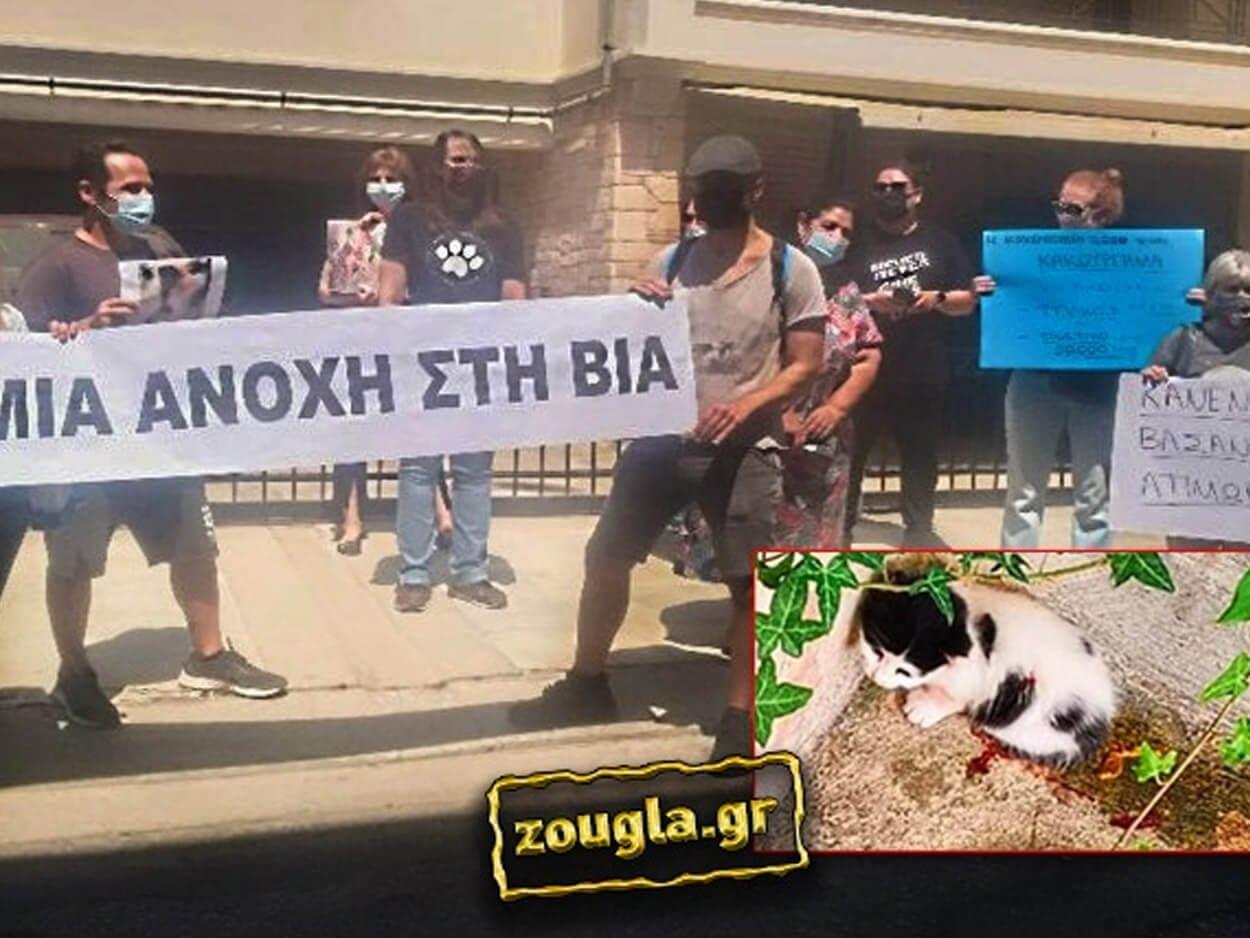 σοκαριστικό περιστατικό θανάτωσης νεογέννητου γατιού, Νέα Σμύρνη: Γυναίκα μαχαίρωσε δύο γατάκια και συνελήφθη – Διαμαρτυρία στο σπίτι της από πολίτες, Eviathema.gr | Εύβοια Τοπ Νέα Ειδήσεις