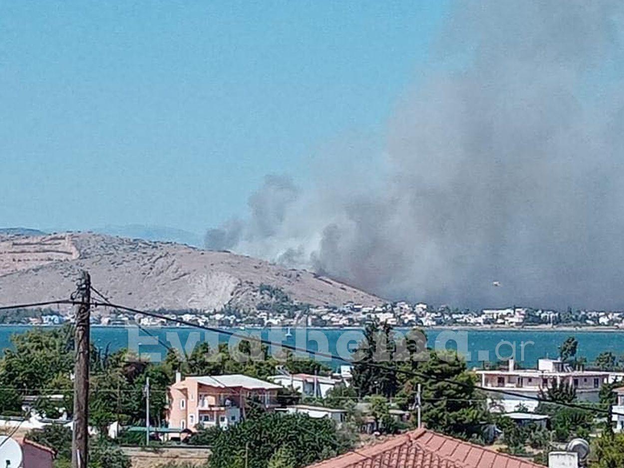 Φωτιά στην περιοχή Βαθροβούνι