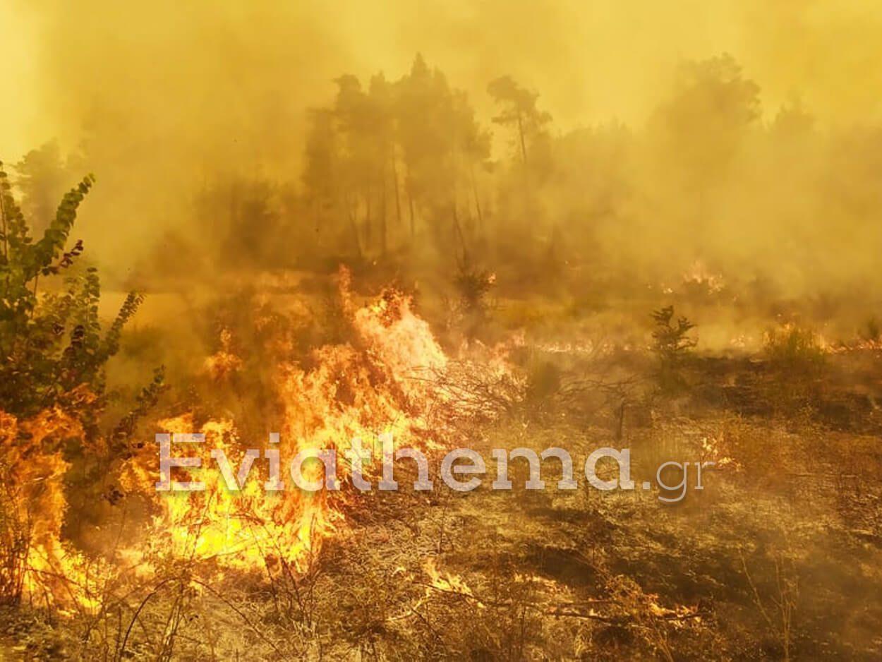 αναζωπύρωση φωτιάς Τρούπι