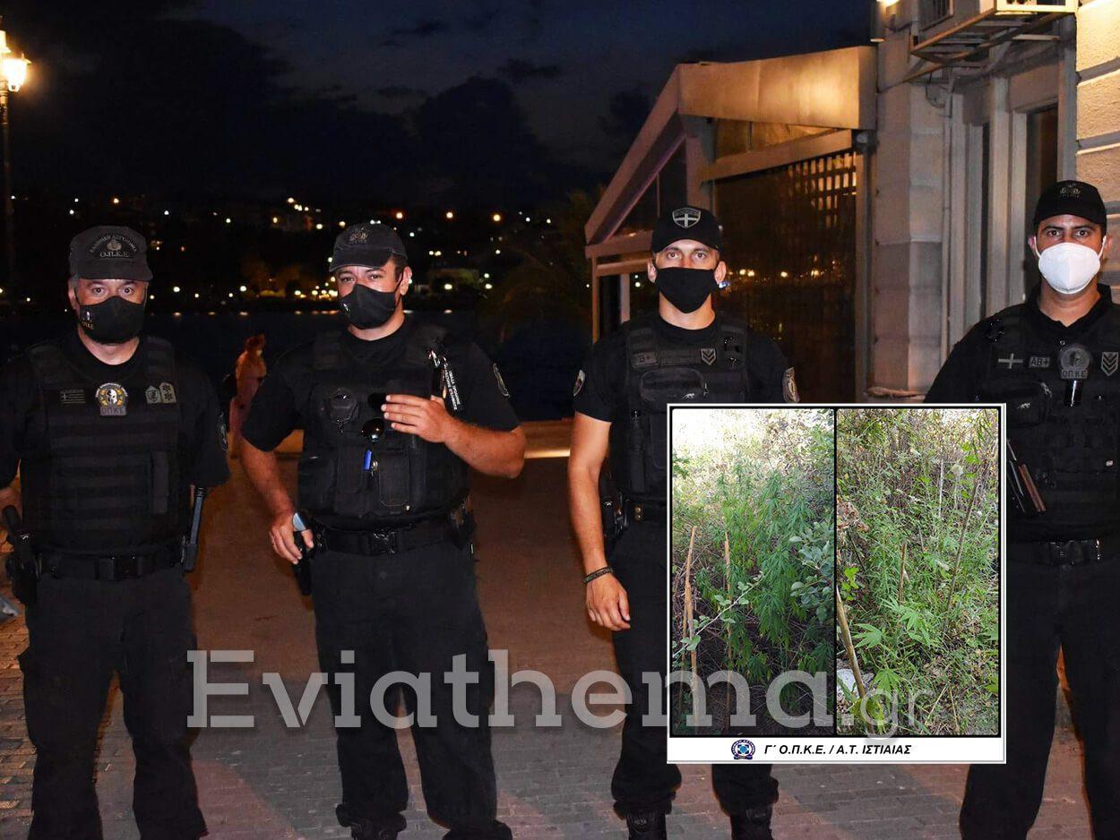 σύλληψη της Γ ΟΠΚΕ